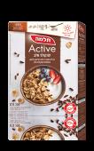 adult_active-chocolate-milk-350
